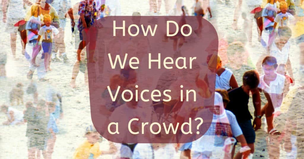 How-Do-We-Hear-Voices-in-a-Crowd